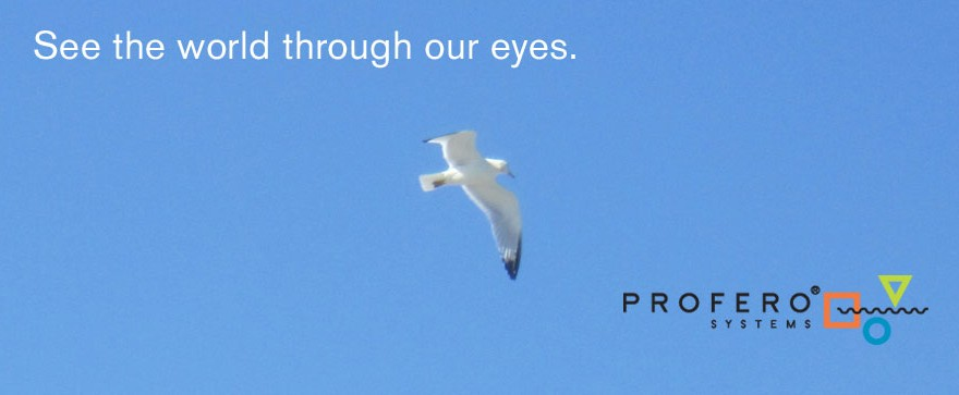 See the world through our eyes